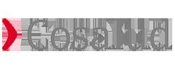 Logo Cosalud